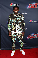 """LOS ANGELES - AUG 20:  Joseph Allen at the """"America's Got Talent"""" Season 14 Live Show Red Carpet at the Dolby Theater on August 20, 2019 in Los Angeles, CA"""