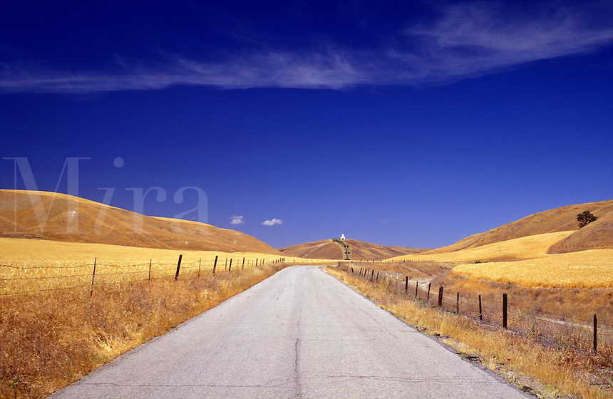 USA, California, Paso Robles, country road passing through hills and wheat fields