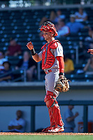 Surprise Saguaros catcher Andrew Knizner (96), of the St. Louis Cardinals organization, during a game against the Surprise Saguaros on October 20, 2017 at Sloan Park in Mesa, Arizona. The Solar Sox walked-off the Saguaros 7-6.  (Zachary Lucy/Four Seam Images)
