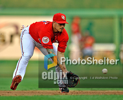 21 June 2008: Washington Nationals' second baseman Felipe Lopez in action against the Texas Rangers at Nationals Park in Washington, DC. The Rangers defeated the Nationals 13-3 in the second game of their 3-game inter-league series...Mandatory Photo Credit: Ed Wolfstein Photo