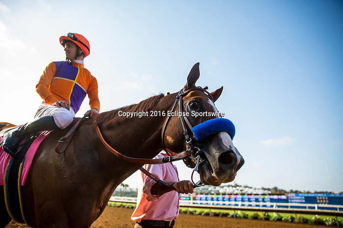 DEL MAR CA - JULY 31: Lord Nelson #8 with Flavien Prat aboard wins the Bing Crosby Stakes at Del Mar on July 31, 2016 in Del Mar, California. (Photo by Alex Evers/Eclipse Sportswire/Getty Images)