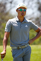 Haotong Li (CHN) during the 3rd round at the Nedbank Golf Challenge hosted by Gary Player,  Gary Player country Club, Sun City, Rustenburg, South Africa. 10/11/2018 <br /> Picture: Golffile | Tyrone Winfield<br /> <br /> <br /> All photo usage must carry mandatory copyright credit (&copy; Golffile | Tyrone Winfield)