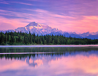 Mt. McKinley reflected in small pond near Talkeetna, Alaska