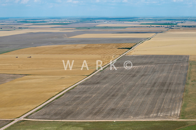 Eastern Adams County, Colorado farmland. July 2014