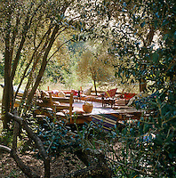 A raised wooden platform in the shade of overhanging olive trees is a favourite place in the garden