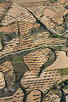 olive groves, Aerial views farmland, La Mancha, near Algodor and Ocana, Toledo, Spain