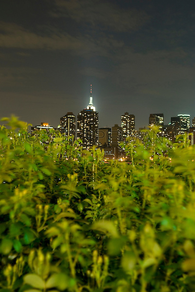 AVAILABLE FROM PLAINPICTURE.COM FOR COMMERCIAL AND EDITORIAL LICENSING.  Please go to www.plainpicture.com and search for image # p5690116.<br />