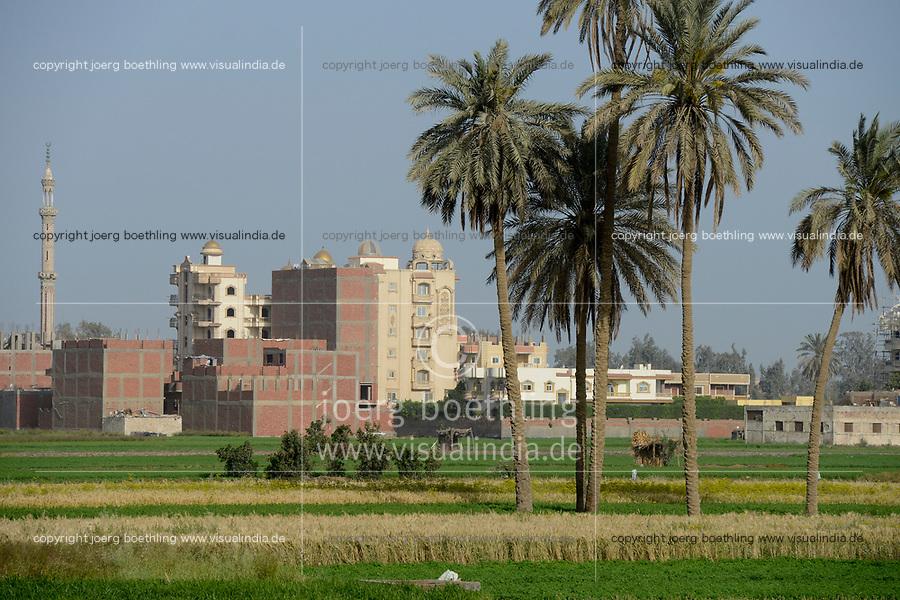 EGYPT, Cairo, farming in the Nile river delta, due to massive construction and city growth the fertile arable land is decreasing  / AEGYPTEN, Kairo, Landwirtschaft im Nil Flussdelta, durch zunehmenden Bau von Haeusern schrumpft die fruchtbare landwirtschaftliche Flaeche