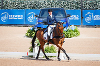 AUS-Emma McNab rides Fernhill Tabasco during the FEI World Team and Individual Eventing Championship Dressage. 2018 FEI World Equestrian Games Tryon. Friday 14 September. Copyright Photo: Libby Law Photography