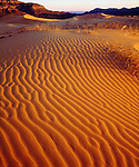 USA, Utah.   Coral Pink Sand Dunes at sunset.