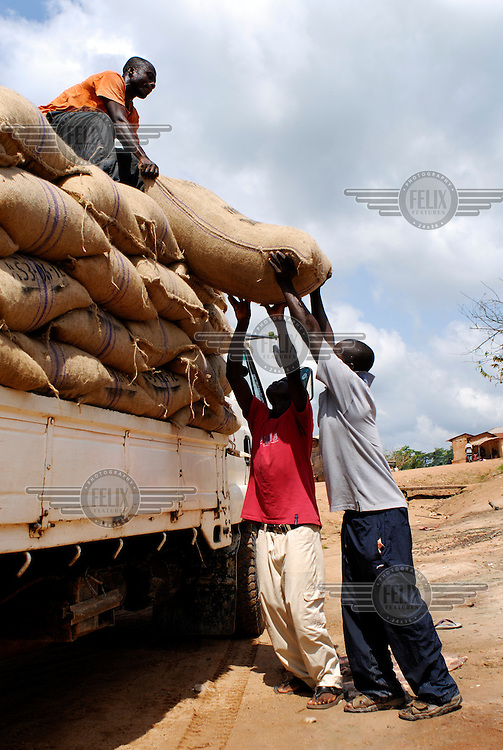 Loading bags of cocoa beans, which way 62.5 kg each, onto the Kuapa Kokoo lorry. Kuapa Kokoo is a farmers' co-operative with 45,000 members spread across the forests of Kumasi. The farmers jointly own a 45 percent stake in the company, which is also a major stakeholder in the London-based fair trade company Divine Chocolate Ltd..