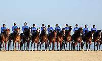 Scheveningen -Paarden oefenen op het strand van Scheveningen voor Prinsjesdag. De paarden worden aan stresstest onderworpen met lawaai en rookbommen. De paarden die het beste uit de test komen, mogen meelopen op Prinsjesdag. Koninklijke Marechaussee
