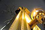 December 8,  2013 copyright JimMendenhallPhotos.com 2013.  Pittsburgh, PA. A tree tries to hang onto the Smithfield Street Bridge at night.