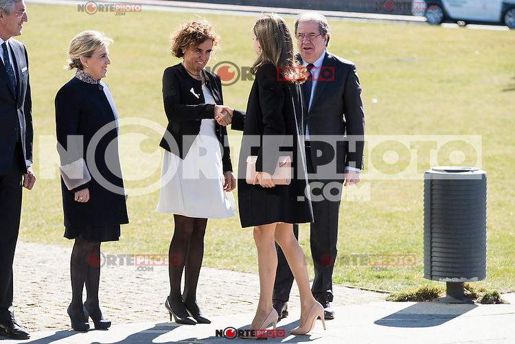 "Queen Letizia and Juan Vicente Herrera arrives to the closing of International Congress ""Woman and Disability"" at congress center ""Lienzo Norte"" in Avila, Spain. March 01, 2017. (ALTERPHOTOS/BorjaB.Hojas)"