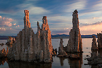 The Mono Laka Tufa Towers were formed when the area was covered with water. Underwater springs rich in calcium chemically reacted with the carbonates in the lake and over a period of decades created these calcium carbonate, or limestone, towers. Some towers reach heights of over 30 feet. The towers were exposed when water was diverted from Mono Lake to a thirsty Los Angeles, drastically lowering the water level.