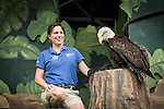 Performer Teresa Rounds displays bald eagle Sukai after the Eild Life Live show at The Oregon Zoo. © Oregon Zoo / Photo by Carli Davidson
