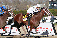 Favorite Gemologist with Javier Castellano held off Alpha toi win the Grade I Wood Memorial for 3-year olds, going 1 1/8 mile, at Aqueduct.  Trainer Todd Pletcher.  Owners Winstar Farm