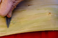 Kapa making on the Big Island: A kapa maker scrapes bits of colored bark from soaked wauke, leaving white fibers.