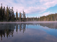 Horseshoe Lake, Gifford Pinchot National Forest, Randle, Washington, USA