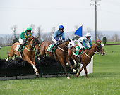 04/19/2014 - Middleburg Spring Races