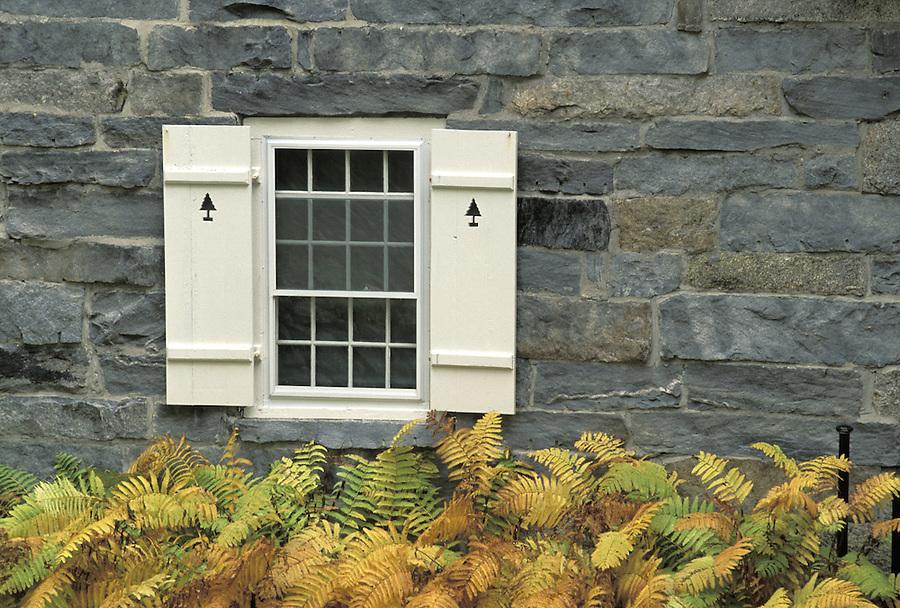 Window in rock wall with ferns