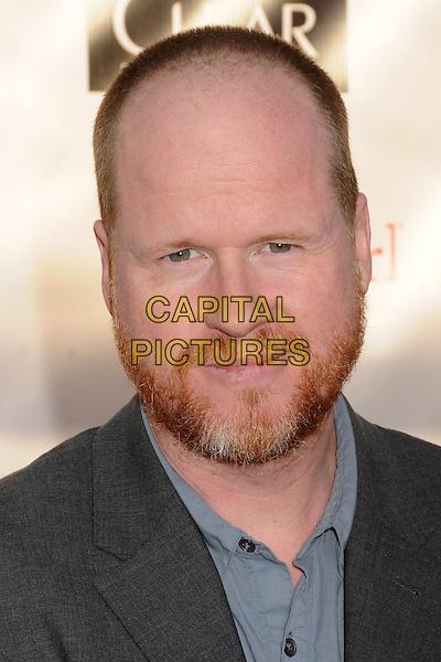 Joss Whedon.18th Annual Critics' Choice Movie Awards - Arrivals held at Barker Hangar, Santa Monica, California, USA, .10th January 2013 .portrait headshot grey gray shirt beard facial hair shirt .CAP/ADM/BP.©Byron Purvis/AdMedia/Capital Pictures.