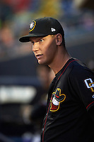 Quad Cities River Bandits pitcher Agapito Barrios (29) during the first game of a doubleheader against the Wisconsin Timber Rattlers on August 19, 2015 at Modern Woodmen Park in Davenport, Iowa.  Quad Cities defeated Wisconsin 3-2.  (Mike Janes/Four Seam Images)
