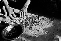 A woman prepares scraps of shrimp that she found on the ground at a market.  During the crackdown, there was a food crisis in the camp.  She was not able to buy enough food for her seven children to eat. (2009)