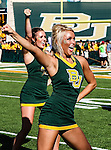 Baylor Bears cheerleaders in action during the game between the Southern Methodist Mustangs and the Baylor Bears at the Floyd Casey Stadium in Waco, Texas. Baylor defeats SMU 59 to 24.