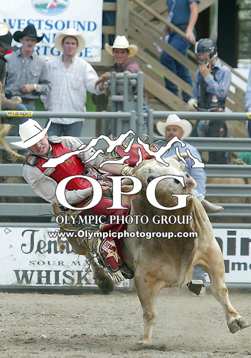 28 August 2005: D J Donangue riding the bull Micky holds on during the Extreme Bulls competition Sunday at the Kitsap County Fair Grounds, Donangue  was not able to hold on for 8 seconds during the first round of  competition in Bremerton, WA.