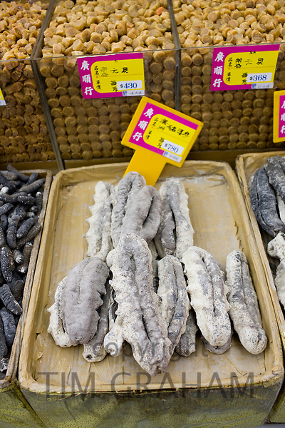 Sea cucumbers and dried scallops on sale in shop in Wing Lok Street, Sheung Wan, Hong Kong, China
