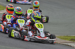 Stars, Comer Cadet, GYG, Tooley Motorsport, Ross Martin