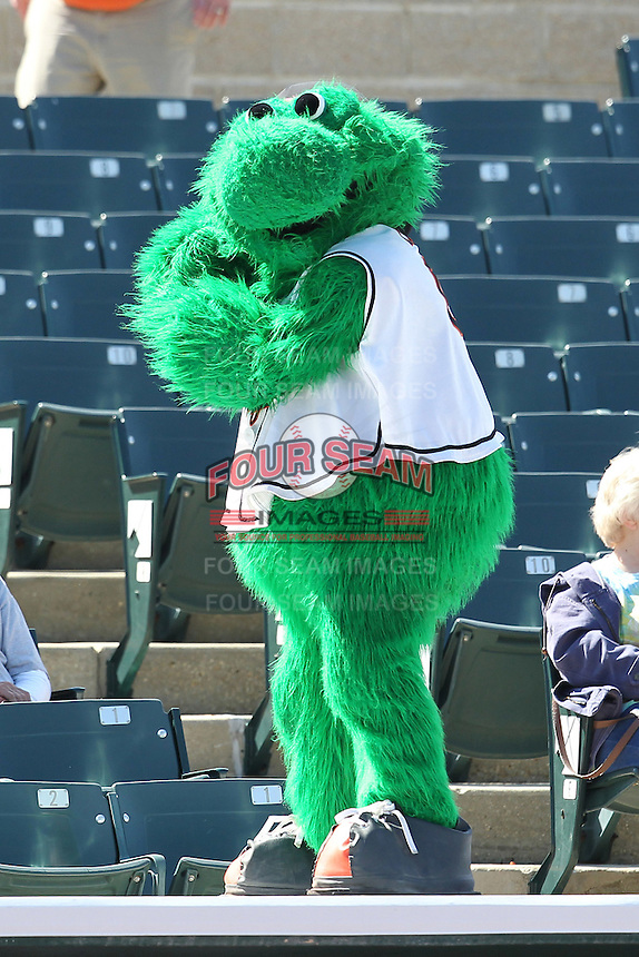 Bowie BaySox mascot Louie during a game against the Harrisburg Senators at Prince George's Stadium on April 8, 2012 in Bowie, Maryland.  Harrisburg defeated Bowie 5-2.  (Mike Janes/Four Seam Images)