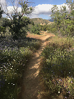 Courtesy photo<br /> Scenery, such as this vista on the Pacific Crest Trail, meeting new people and visiting small towns are Schaefer's favorite things about long-distance backpacking.