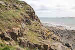 Rocky headland and sea, Holy Island, Lindisfarne, Northumberland, England, UK