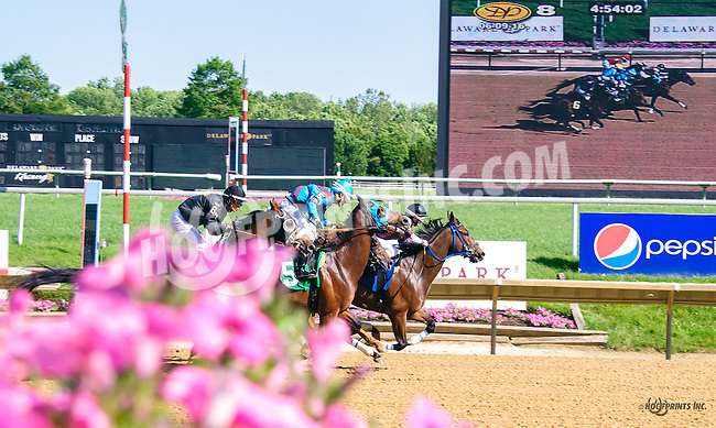 First time by the grandstand before Hey Willie won at Delaware Park on 6/9/16