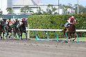Horse Racing: Procyon Stakes