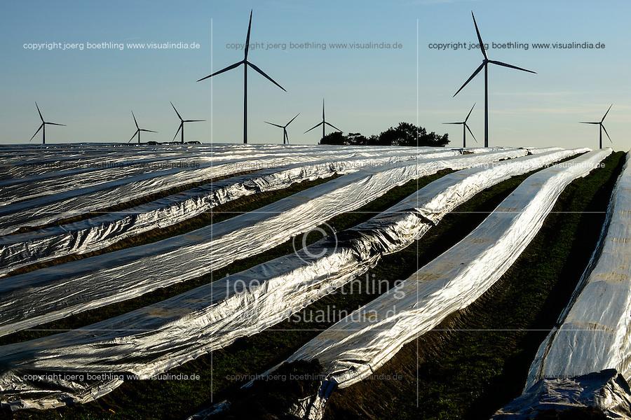 GERMANY, windfarm and asparagus field / DEUTSCHLAND Plauerhagen, Windpark der Mannheimer Stadtwerke MVV mit Eno Windkraftanlagen und Spargelfeld