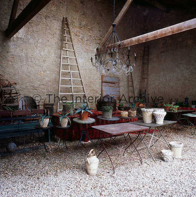 An antique chandelier is a focal point in an old stone barn, which acts as a garden room. Several plants in pots stand on tables and are dotted around the large space. Wooden ladders are propped up against the walls.