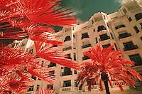"""Europe/France/Provence-Alpes-Côte d'Azur/06/Alpes-Maritimes/Cannes: L'hotel """"Martinez"""" sur la croisette"""
