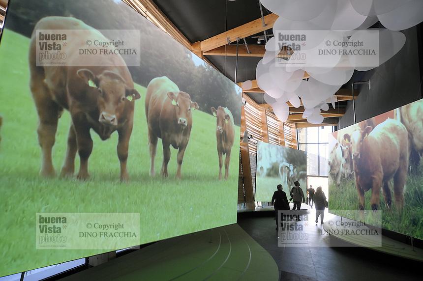 - Milano, Esposizione Mondiale Expo 2015, padiglione Irlanda<br /> <br /> - Milan, the World Exhibition Expo 2015, Irish pavilion