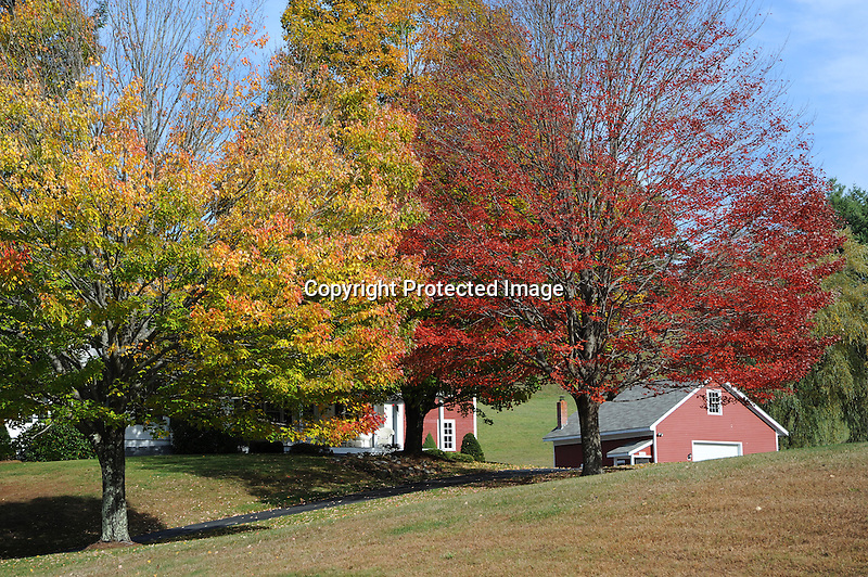 Homestead Nestled in Colorful Foliage during Fall Season in rural Walpole, New Hampshire USA