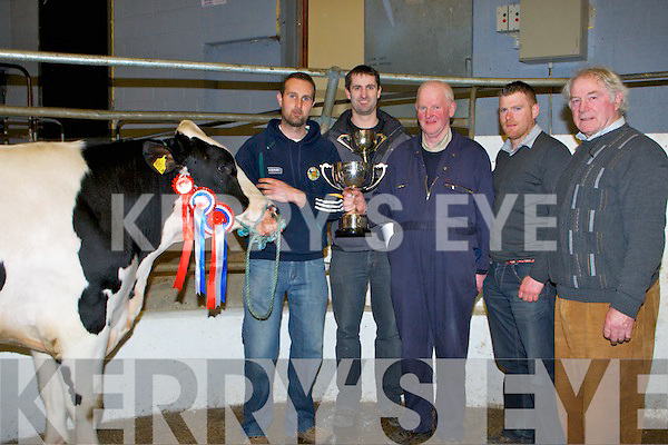 CHAMPION:  William and Jonathan Horgan KLillarney with theirChampion Bull at the 85th Annaul Show and Sale of buklls at Castleisland Mart, on Tuesday l-r: William and Jonathan Horgan (Killarney), John Brosnan (chairperson of the 85th Annaul Show and Sale), Martin and PJ Kelly (judges).
