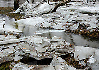 Historic low temperatures preceeded by heavy snow and floowed by a 502 to 60 degree warm up over two days created an ice break up that flowed over the banks almot a hyundred feet out, DuPage River, Will County, Illinois