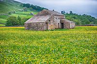 Stone field barn, Swaledale, Yorkshire Dales.