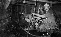 Sangerhausen / DDR - 1989.Miniera di rame Thomas Munzer. 700 metri di profondità. Minatori al lavoro nelle gallerie sul fronte della miniera.Le gallerie erano alte un metro. Le ginocchia affondavano nel fango. Le squadre di minatori lavoravano 24 ore suddivisi in turni di 8 ore. A causa delle dure condizioni di lavoro, numerosi operai si ammalavano di silicosi e reumatismi ed andavano in pensione in anticipo. In compenso i loro stipendi erano i più alti della DDR. Dopo la reunificazione della Germania la miniera Thomas Munzer è stata chiusa..Foto Livio Senigalliesi..Sangerhausen / DDR - Dec.1989.Thomas Munzer copper mine. In a tunnel 700 meters depth. Workers on board a small train that brought them to work on the front of the mine. Working conditions were very hard. They worked on their knees in the dark using the lamp of acetylene. Teams of miners worked 8 hours in 3 shifts. After the unification of Germany Thomas Munzer copper mine was closed and has now become a museum..Photo Livio Senigalliesi .