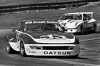 Sam Posey drives a Datsun 260Z during an IMSA Camel GT race at the Mid-Ohio Sports Car Course near Lexington, Ohio, on June 5 1977. (Photo by Bob Harmeyer)