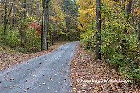 63895-15620 Road & Fall color Pyramid Lake State Recreation Area Perry Co. IL