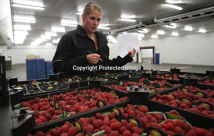 Foto: VidiPhoto..ZALK - Ze ziet er uit als een model en ze rijdt als een kerel. Daarom kijken heel wat mannelijke collega's zich de ogen uit als ze de knappe 21-jarige truckchauffeur Willemina Boxhoorn uit Zalk ontmoeten. Inmiddels is ze wijzende en zwaaiende automobilisten overigens wel zat. De Overijsselse schone vervoert dagelijks aardappels, groenten en fruit door Nederland voor haar baas, AGF groothandel Postuma uit IJsselmuiden. Het laden en lossen van de oplegger doet ze zelf. Ze heeft het niet van een vreemde, want ook haar vader is trucker. Steeds meer vrouwen kiezen er voor een chauffeursdiploma te halen. De transportsector verwacht over enkele jaren een flink tekort aan truckchauffeurs.