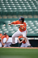 Baltimore Orioles center fielder TJ Nichting (71) squares around to bunt during a Florida Instructional League game against the Pittsburgh Pirates on September 22, 2018 at Ed Smith Stadium in Sarasota, Florida.  (Mike Janes/Four Seam Images)